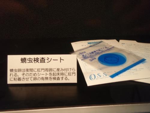 とろけ・目黒・寄生虫・目青・蔦 023.JPG