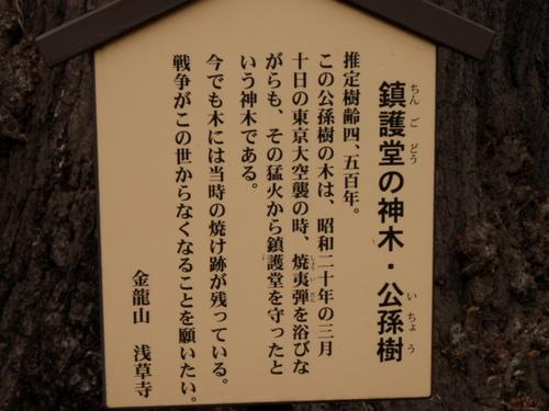 浅草 12月31日 004.JPG
