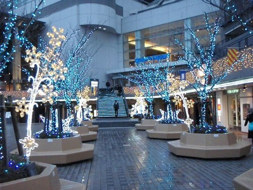 1月18日 横浜 058.JPG